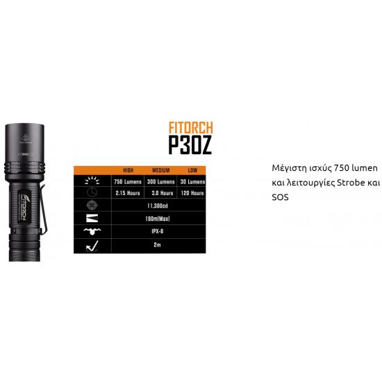ΦΑΚΟΣ LED FITORCH P30Z 750 LUMENS